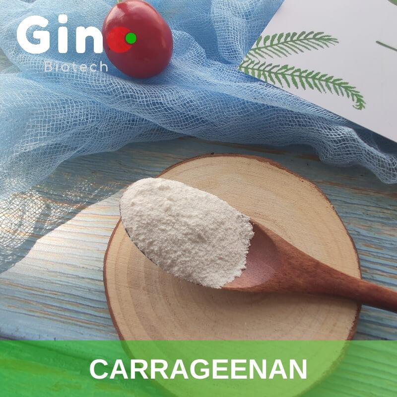 Carrageenan_Gino Biotech_Hydrocolloid Carrageenan Suppliers 1