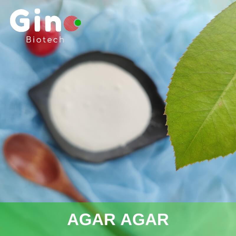 Agar Agar_Gino Biotech_Hydrocolloid Agar Agar Suppliers 2