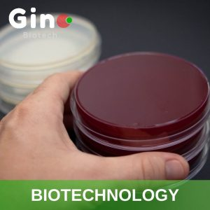 Biotechnology Industry_Gino Biotech_Hydrocolloid Suppliers