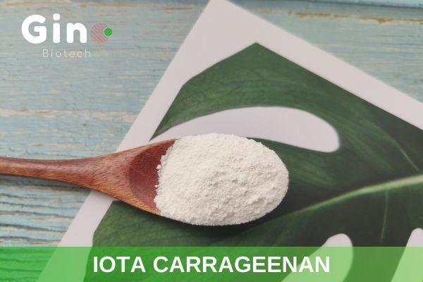 Iota carrageenan in food