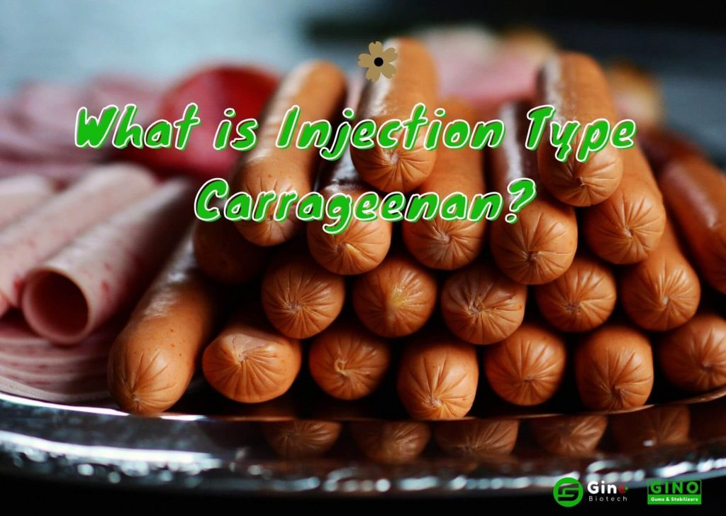 what is injection type carrageenan_Gino Biotech_Carrageenan Supplier