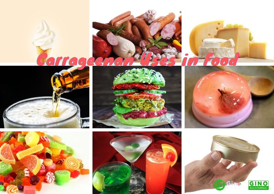 carrageenan uses in foods 1