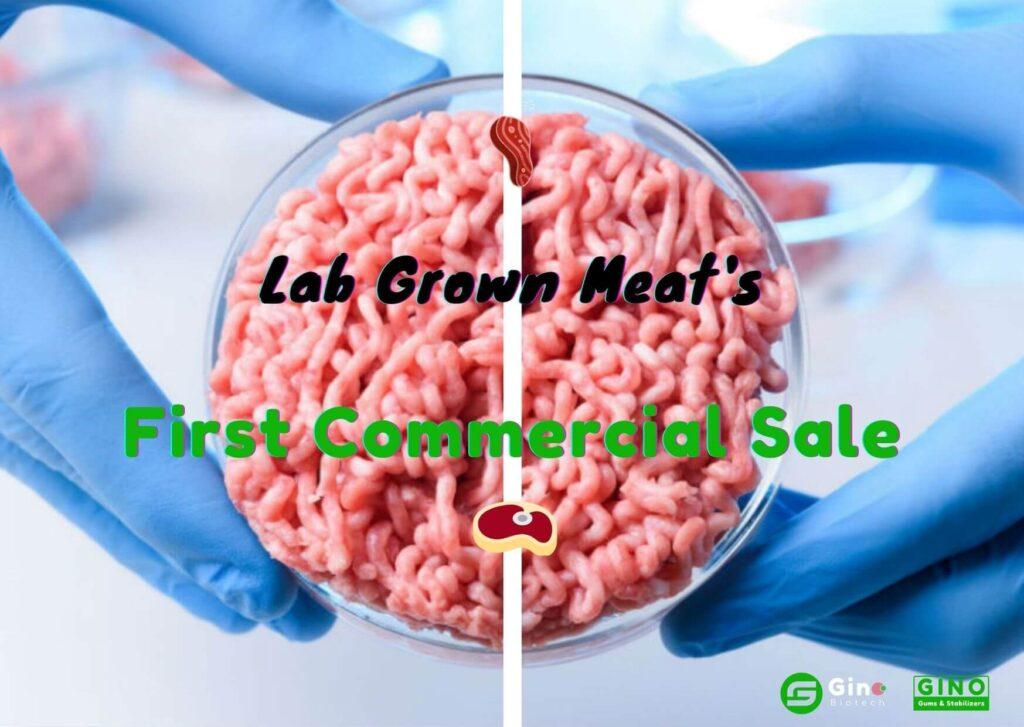 lab grown meat (3)