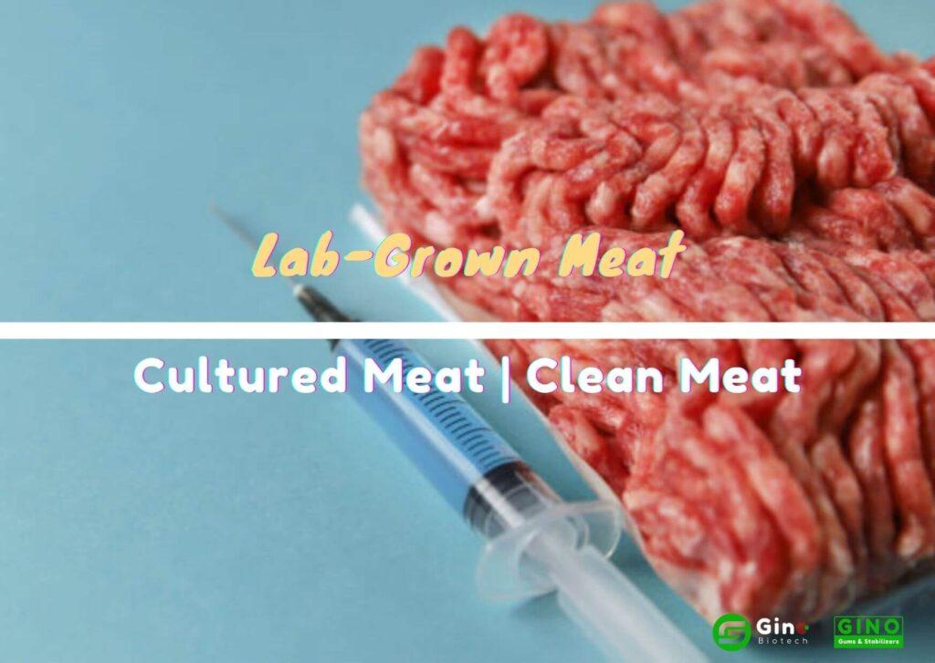 lab grown meat (4)