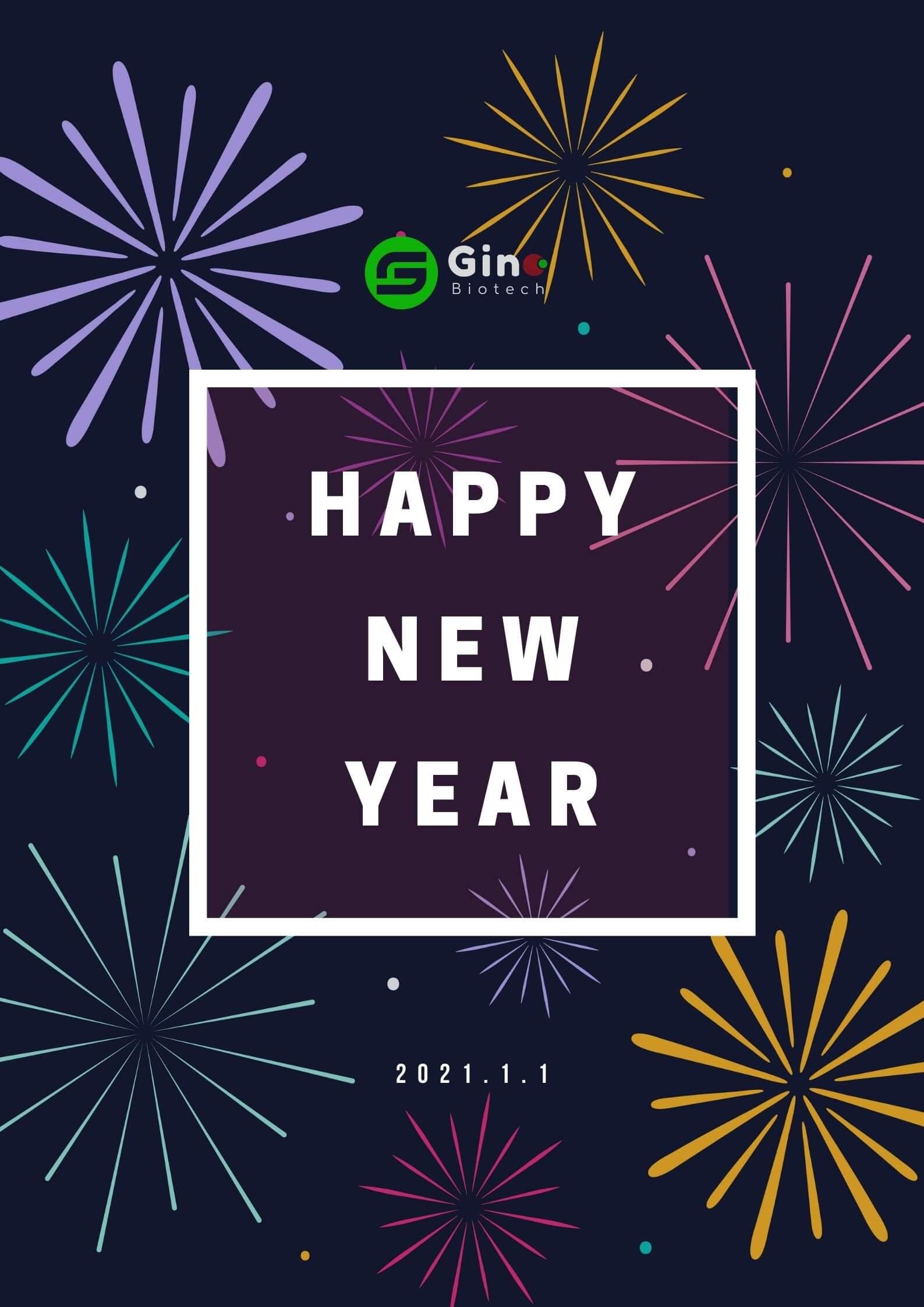Happy new year 2021 41