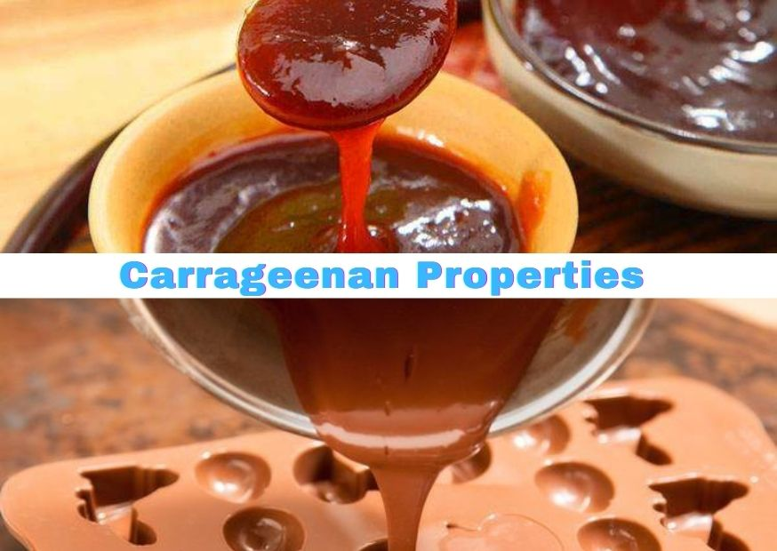 Carrageenan Properties and Synergistic Effects with other Gums 874-620 (3)