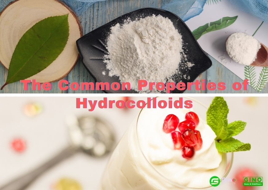 What are the Common Properties of Hydrocolloids