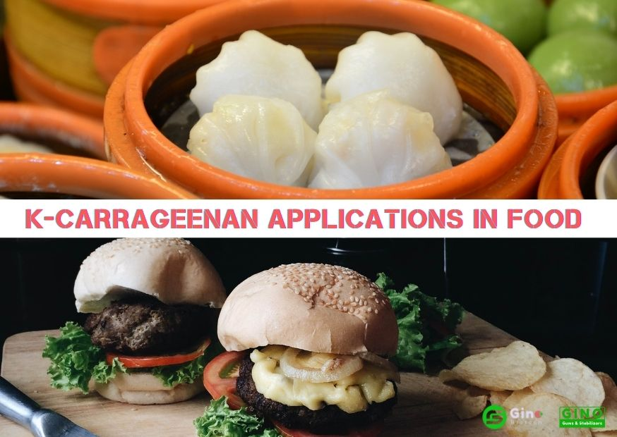 κ-Carrageenan Applications in Food (2)