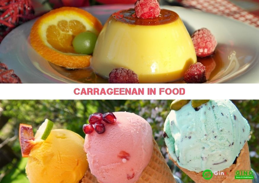 carrageenan in food jelly & ice cream