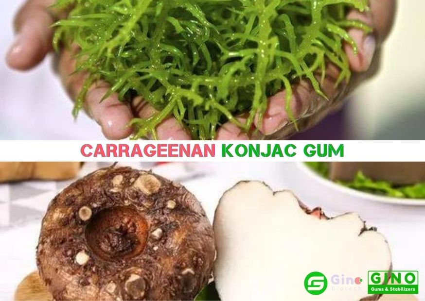 Konjac gum and Carrageenan in Jelly Applications-04