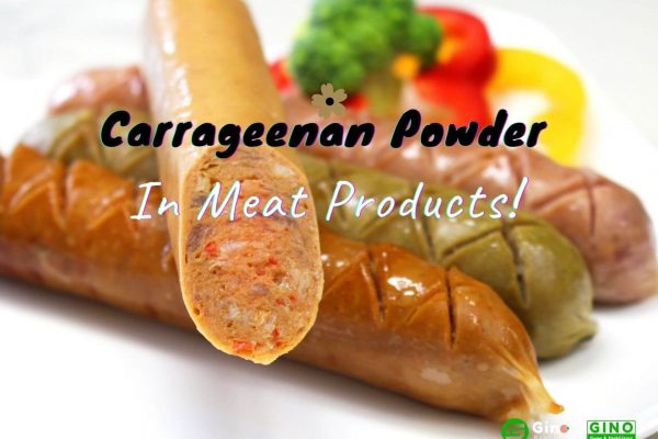 carrageenan powder in meat products_Gino Biotech_Carrageenan Supplier