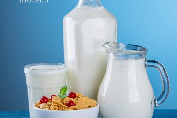 Dairy_Gino Biotech_Hydrocolloid Suppliers