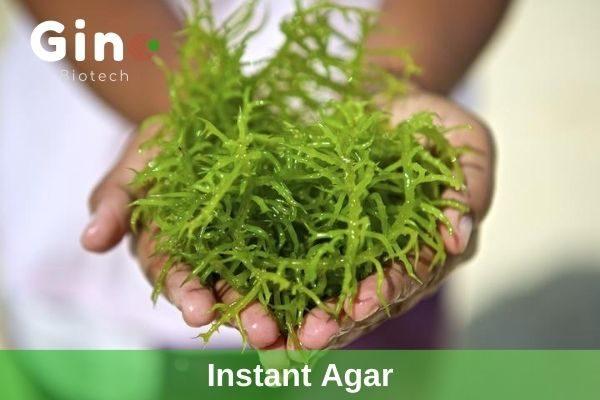 spreadable agar raw material, instant agar supplier