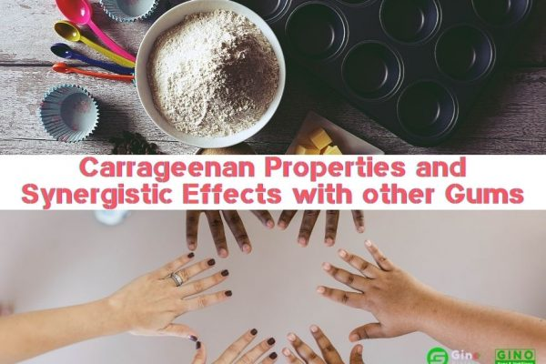 Carrageenan Properties and Synergistic Effects with other Gums 874-620 (2)