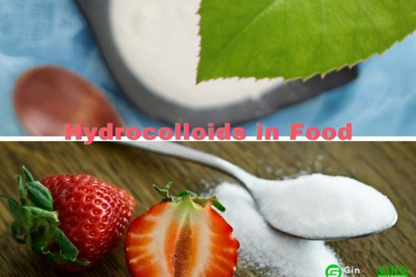 The role of hydrocolloids in food (1)