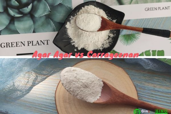 agar agar vs carrageenan (3)