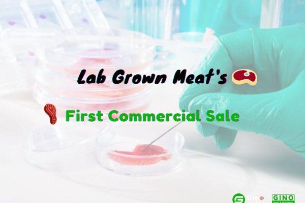 lab grown meat (2)
